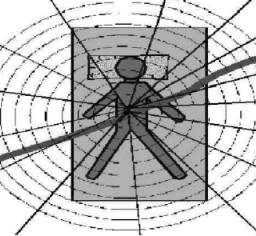 Vortex - LEY - törésvonal